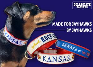 Collegiate Canines
